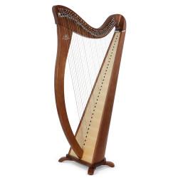 Harpe CAMAC, modèle HERMINE