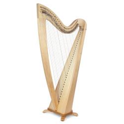 Harpe CAMAC, modele TELENN