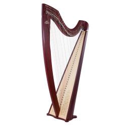 Harpe CAMAC, modèle ISOLDE Celtique