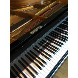 PIANO A QUEUE W HOFFMANN...
