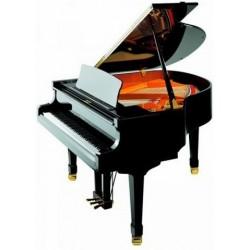 PIANO A QUEUE PETROF P-V BORA 1,59 m Noir Brillant OFFRE SPECIALE