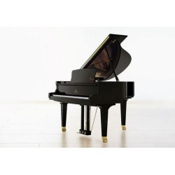 PIANO A QUEUE SAUTER 160 ALPHA /A partir de 31 420 €/OFFRE PROMOTIONELLE ?