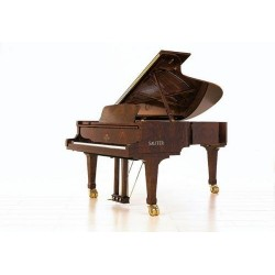 PIANO A QUEUE SAUTER 220 OMEGA A Partir de 46 010 €/OFFRE PROMOTIONELLE ?