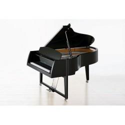 PIANO A QUEUE SAUTER Peter Maly VIVACE 210 cm/Noir Poli/OFFRE PROMOTIONELLE ?