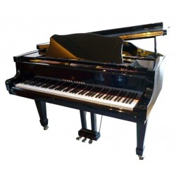 PIANO A QUEUE YOUNG-CHANG G-157 Noir Brillant