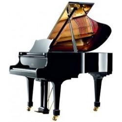 PIANO A QUEUE WILH.STEINBERG P 152 Noir Poli /NOUVEAUTE