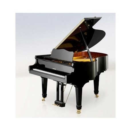 PIANO A QUEUE W.HOFFMANN Vision V158 Noir Brillant