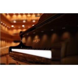 PIANO A QUEUE SHIGERU KAWAI SK5L 200cm Noir brillant