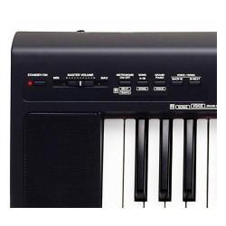 Clavier numérique NP30 noir mat ***OCCASION***