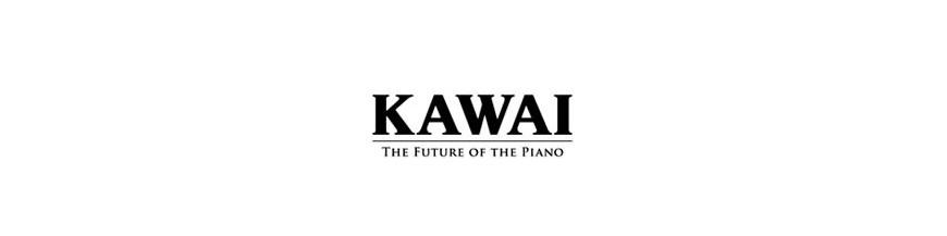 KAWAI anytime